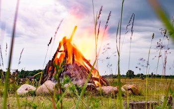Wallpaper: Fire in the Green Grass