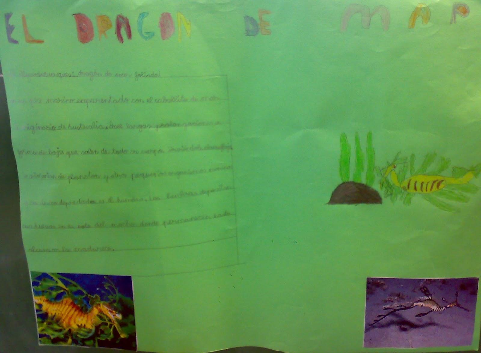Ceip El Zargal Second Grade El Dragon De Mar Dani