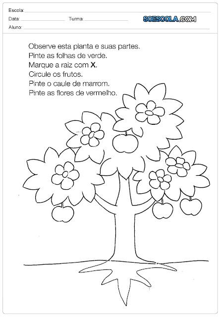 Atividades sobre o Dia da Árvore - 21 de Setembro