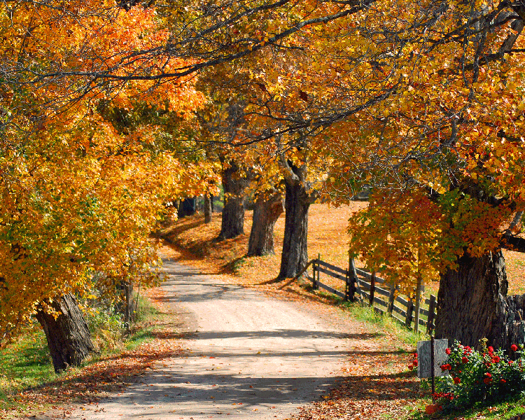 Fall In Vermont Wallpaper Fairy Farm Most Beautiful Places In The World Download