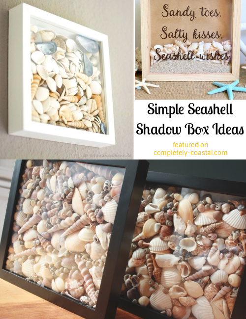 Simple Seashell Shadow Boxes