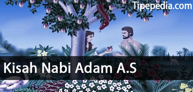 Kisah Nabi Adam A.S dan Siti Hawa