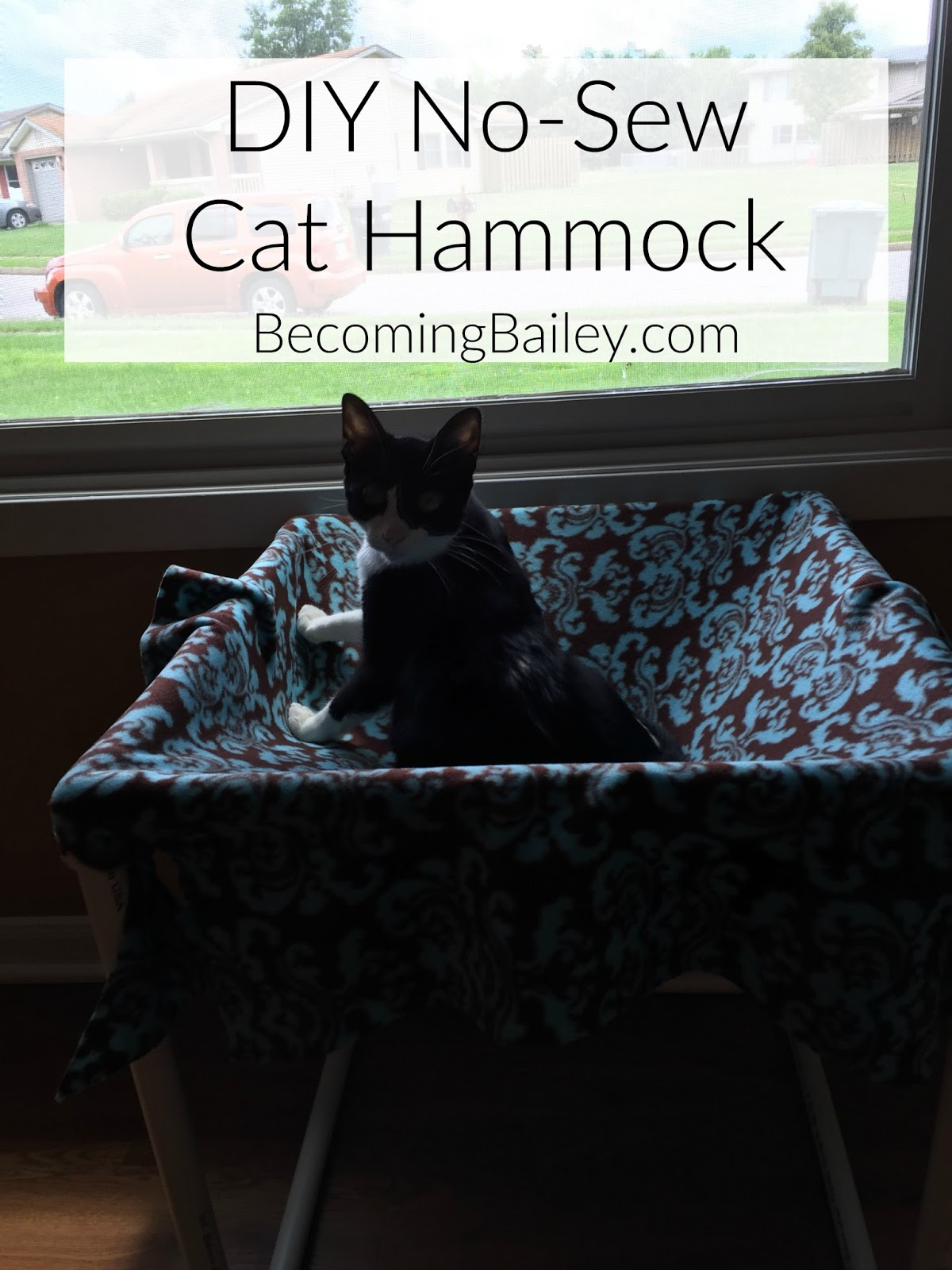 why a cat hammock  because i love to spoil gracie since she is the star of the family   shh don u0027t tell my husband   diy no sew cat hammock   be ing bailey  rh   be ingbailey