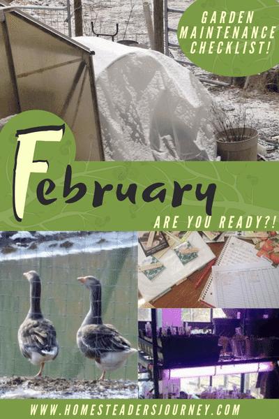 Garden Maintenance Checklist for February