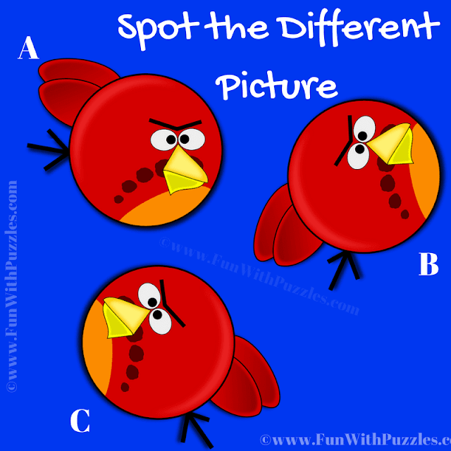 In this Visual Puzzle there are three Angry Bird's pictures. Your challenge is to find the puzzle image which is different from other two pictures.