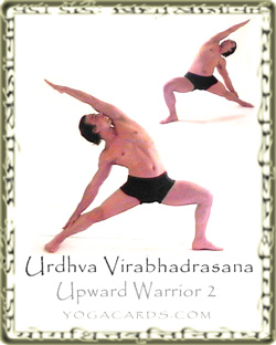 living yoga warrior poses