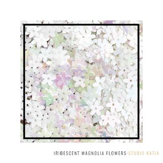 Iridescent Magnolia Flowers