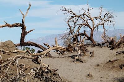 Largest Deserts in the World, deadliest Deserts in the World, biggest Deserts in the World