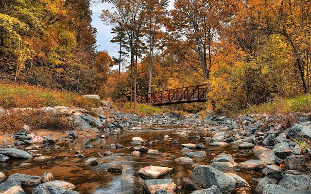 Een riviertje met stenen en bomen in de herfst