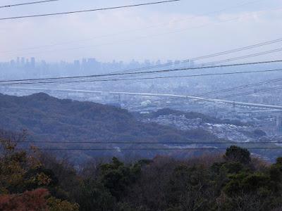 くろんど園地 展望台からの眺望 大阪市内の高層ビル群