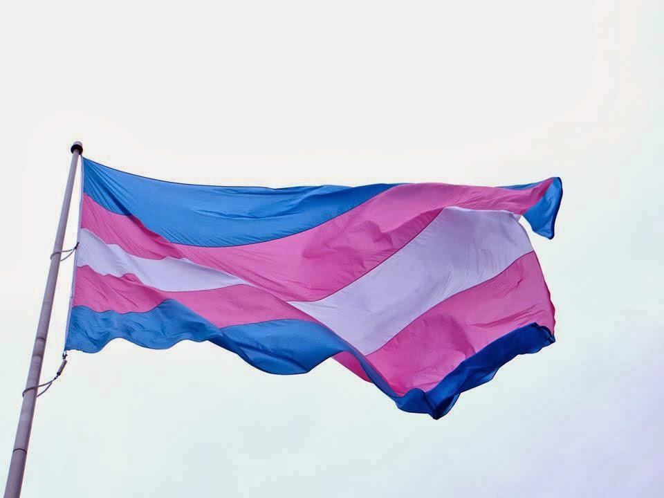 Mãe que internou filha trans é proibida de se aproximar dela pela Lei Maria da Penha