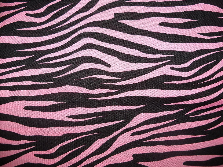 Short Paragraph on Zebra (350 Words)