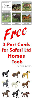 FREE 3-Part Cards for Safari Ltd Horses Toob from In Our Pond
