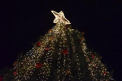 Αποτέλεσμα εικόνας για agriniolike χριστούγεννα