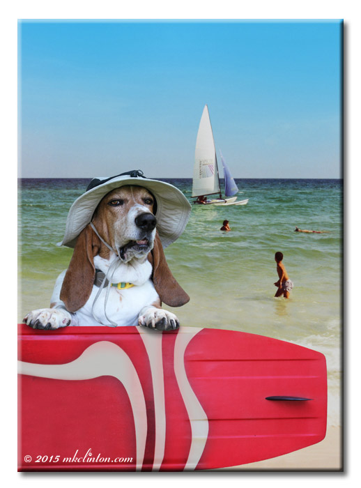 Basset Hound wearing a floppy hat with surfboard. Sailboat on ocean in background