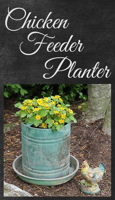 G 4 gardening backyard ideas for Old chicken feeder ideas