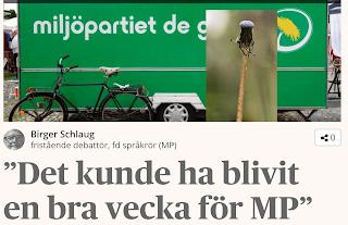 https://www.dagenssamhalle.se/debatt/birger-schlaug-miljopartiets-problem-ar-hemsnickrade-19841