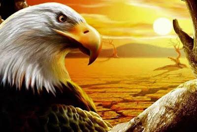 Αετός: Το Σύμβολο του Δία στην Αρχαία Ελλάδα και τον Κόσμο