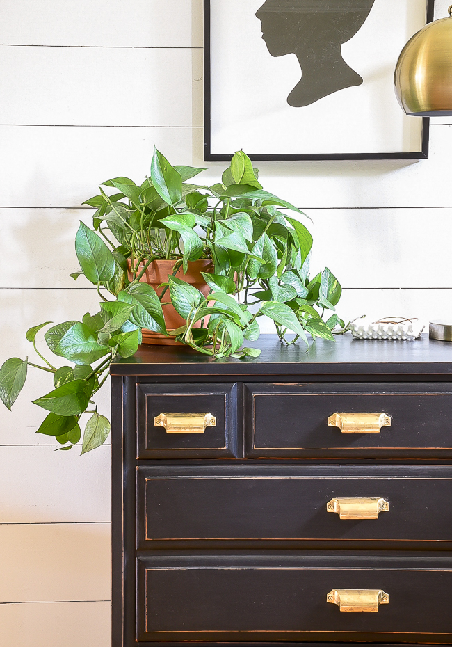 Black painted dresser with brass bin pulls