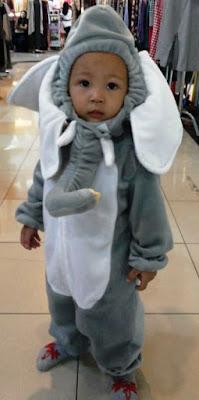 Kostum Binatang