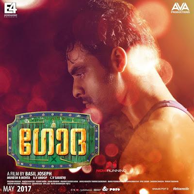 Godha (2017) 480p Dual Audio [Hindi – Malayalam] – 350 MB