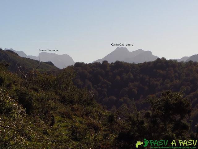 Vista del Canto Cabronero y Torre Bermeja desde la ruta del bosque de Cea