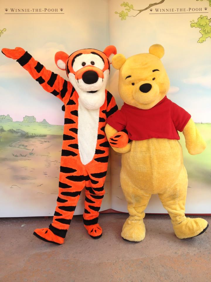 winnie the pooh meet and greet magic kingdom