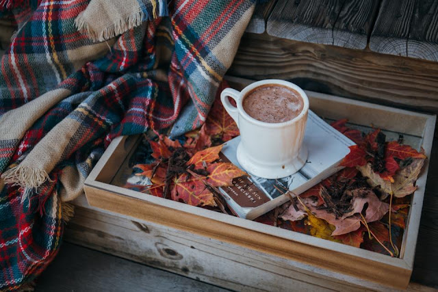 automne livre book fall autumn hot chocolate chocolat chaud plaid couverture cocooning