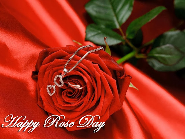 Best Image and Wallpaper Happy Rose Day 2017