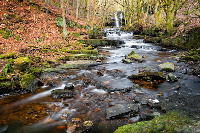 Waterfall and woodland in the North Pennines near Bowlees