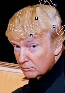 Imágenes actores pelados famosos fotos hombres calvos graciosos pelon liso peinado donald trump
