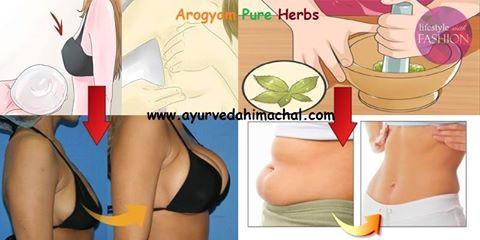 Bcaa supplement weight loss