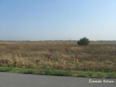 autostrazi-europene-romania-2