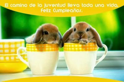 feliz cumpleaños conejitos