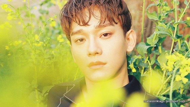 Lirik Chen - Flower artinya