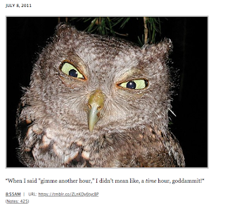 post from Hungover Owls Tumblr