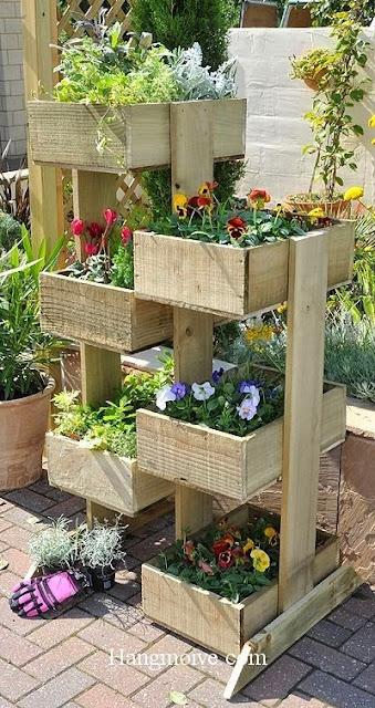 Hoặc những miếng gỗ bỏ đi ta có thể đóng lại tạo thành những chậu hoa đẹp mắt