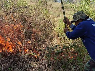 Hutan Utara dan Selatan Mojokerto Terbakar