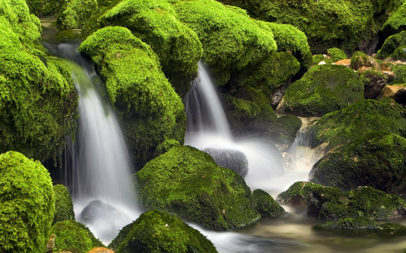 Waterfall With Green Rocks HD Wallpapers