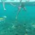 Saat Snorkeling Di Pantai Lovina, Amazing !! Melihat Langsung Lumba - Lumba Dihabitat Aslinya Dan Snorkeling Fun!!