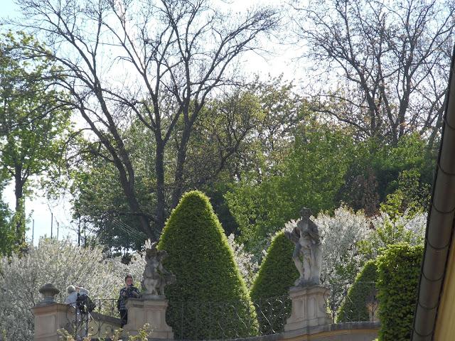 rzeźby, topiary