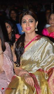Actress Shriya Saran New Images in Silk Saree at Gautamiputra Satakarni Audio Launch  0025.jpg