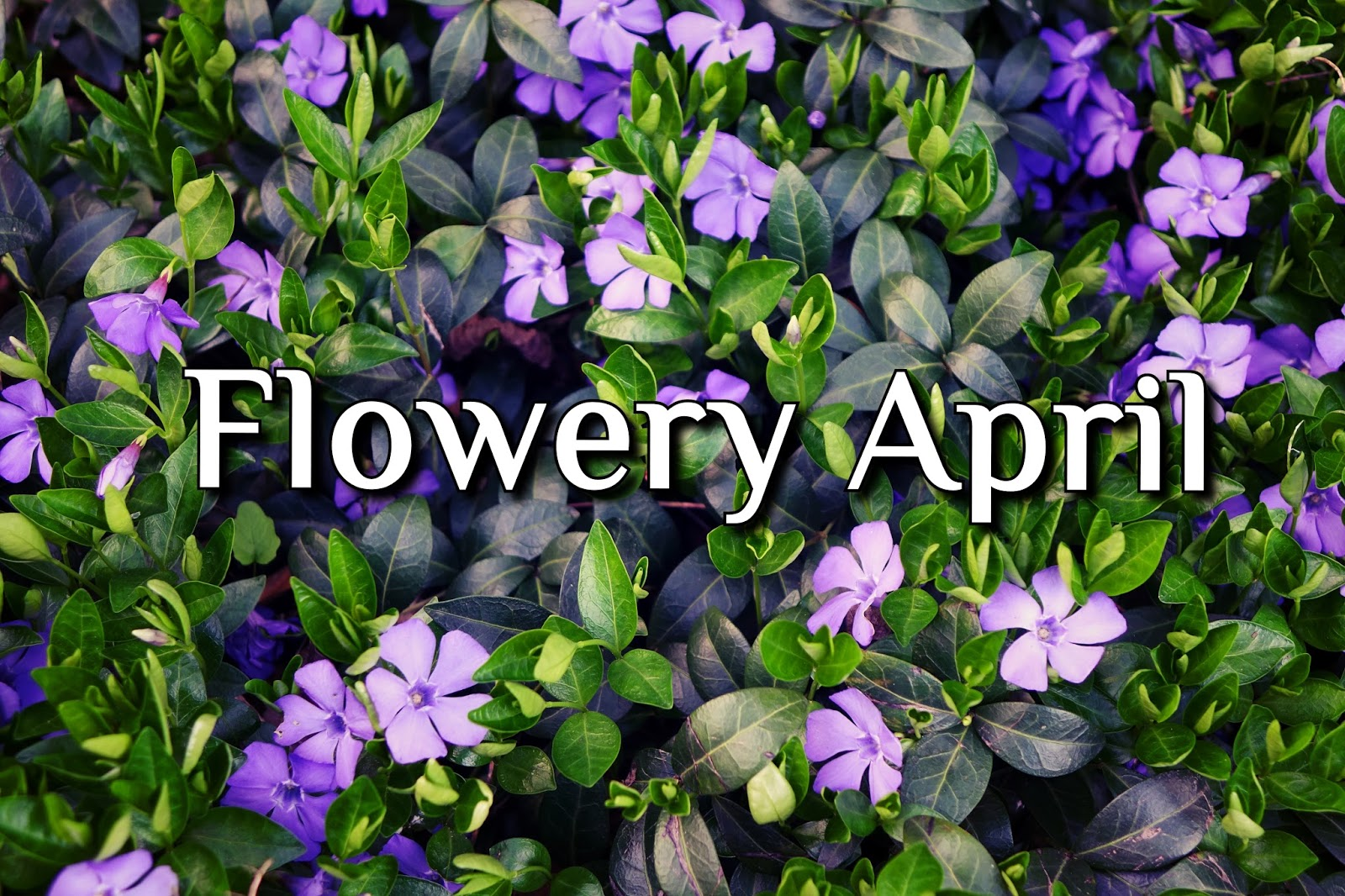 Flowery April