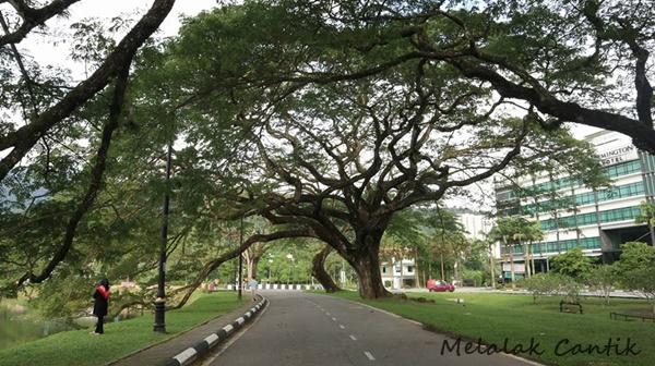 Lake Gardens, Taiping Perak