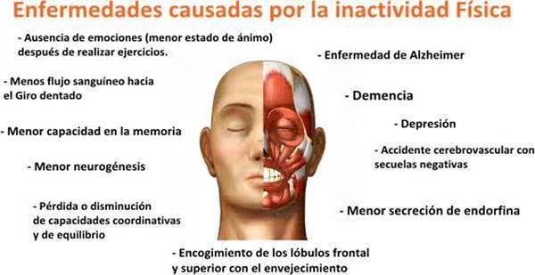 Enfermedades físicas y mentales causadas por el sedentarismo e inactividad física