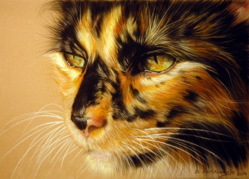 02-Tortoiseshell-Cat-Danguole-Serstinskaja-Paintings-of-Cats-that-look-like-Photographs