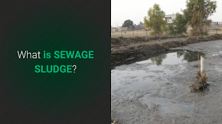 "Image features the ""What is Sewage Sludge"" web page."