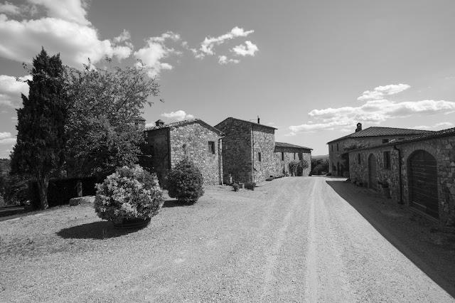 Cantine Marchesi Mazzei-Vigne