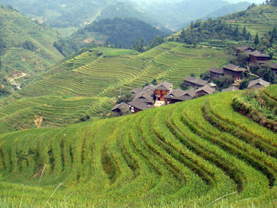 Longji Terrace Field - Salika Travel - 9D7N Guilin Yangshuo by Batik Air
