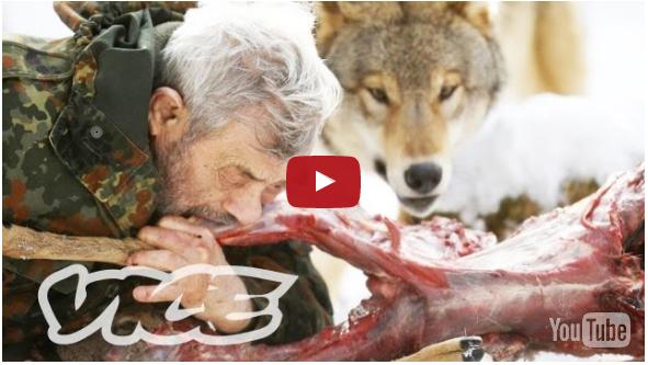 بالفيديو شاهد.. رجل يعيش مع الذئاب منذ 40 سنة!.... لن تصدق دالك حتى تشاهد بعينك